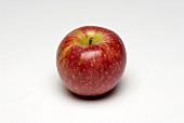 Ein roter Apfel (Sorte: Winsap)