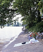 Picnic with drinks on a river bank