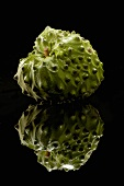 A Single Cherimoya on a Black Background, Reflection