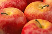 Close Up of Pink Lady Apples
