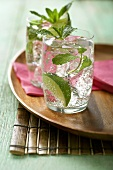 Two Mojitos on a Tray with Pink Cocktail Napkins