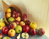 Still Life: Apples in a Cornucopia Basket