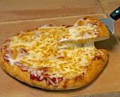 Käse-Pizza, ein Stück auf Pizzaheber