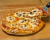 Pizza mit Pilzen & Käse, ein Stück auf Pizzaheber