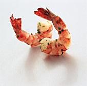 Two Jumbo Shrimp with Cilantro