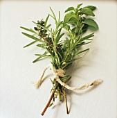 Bundle of Thyme, Rosemary and Oregano
