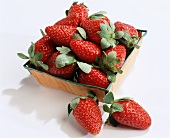 Strawberries in a Pint Tray