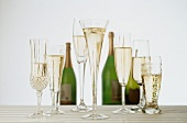 Champagne in a Variety of Glasses; Bottles of Champagne in the Background