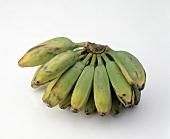 Williams Bananas
