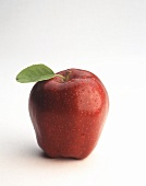 Red Delicious Apple with Leaf; Misted with Water