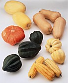 Assorted Winter Squashes