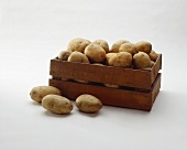 Russet Potatoes in a Wooden Crate