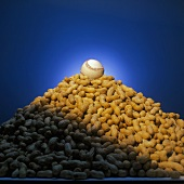 Pile of Unshelled Peanuts with a Baseball Resting on Top