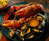 Cooked Lobster with Mussels and Drawn Butter