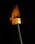 Flaming Marshmallow on a Stick