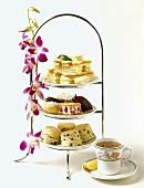Assorted Sandwiches and Pastries for Teatime
