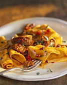 Ribbon Pasta with Beef and Tomatoes