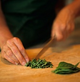 Person Chopping Fresh Basil
