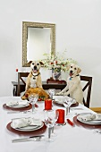 Two Dogs Sitting at a Set Christmas Table