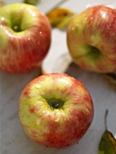 Braeburn apples with drops of water