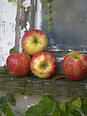 Four Braeburn apples on rustic window-sill