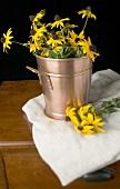 Yellow flowers (Black-eyed Susan) in & beside metal bucket