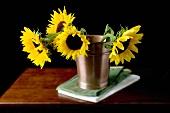 Sunflowers in metal bucket
