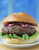 Close Up of a Hamburger on Bun with Red Onion and Lettuce