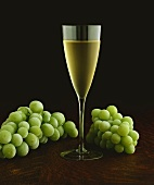 Glass of White Wine Surrounded by Grapes
