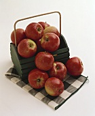 Red Apples in a Wooden Pail and on a Green Checked Cloth