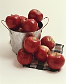 Red Apples in a Metal Pail and on a Green Checked Cloth