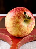 Single Braeburn Apple