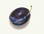 A Single Plum on a White Background