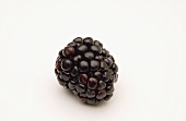 A Single Blackberry on a White Background