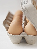 Close Up of Brown Eggs in Carton