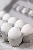 Carton of White Eggs