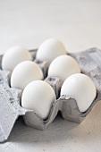Six White Eggs in a Cardboard Carton