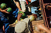 Men Selling Melons from the Back of a Truck