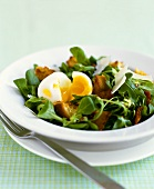 Green Salad with Bacon, Egg and Parmesan