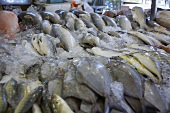 Whole Fish on Ice at an Asian Fish Market