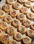 Tray of Sugar Cookies with Multi-Colored Sprinkles