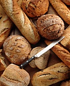 Many Assorted Loaves of Bread with a Bread Knife