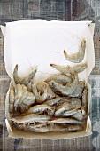 Opened Cardboard Box of Fresh Whole Shrimp