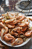 Wire Scoop Piling Whole Boiled Shrimp onto a Platter