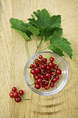Overhead of a Bowl of Red Currants