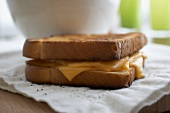 A Grilled Cheese Sandwich