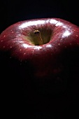 Red Delicious Apple; Close Up
