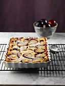 Whole Plum Tart in a Baking Dish on a Cooling Rack