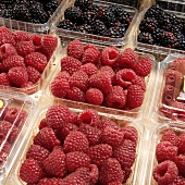 Red Raspberries and Blackberries in Plastic Containers