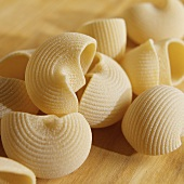 Medium Shell Pasta